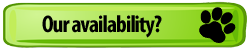Green-Dog-Paw-Button-Our-Availability