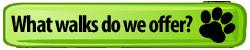 Green-Dog-Paw-Button-Walks-We-Offer